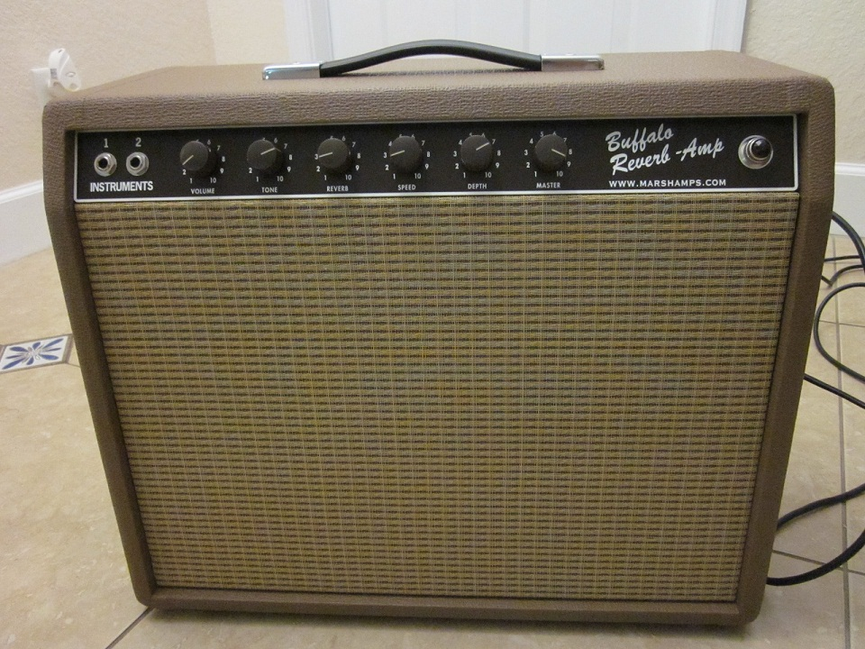 Marsh 6G2RT Buffalo Reverb Amp 112 Combo
